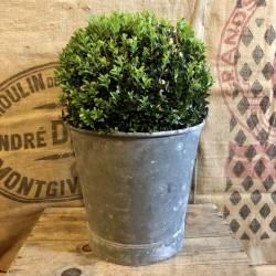 Old bucket | Galvanized zinc | Bucket of wells | Farmhouse