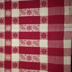 Old tablecloth with red and white checks - Picnic