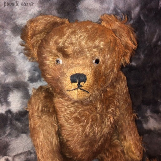 Old teddy bear cat - Glass eyes