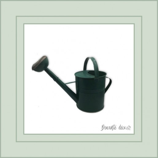 Old tin watering can