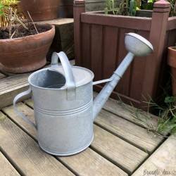Small 5 liter watering can | In Zinc | Garden decoration